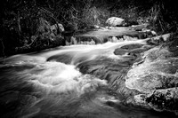 Falls at Fossil Creek (B&W)